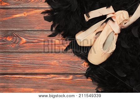 Part Of Black Swan Ballet Outfit