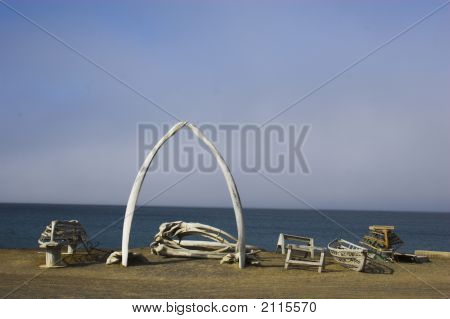 Various views and structures of whale bones in native whaling village on Arctic Ocean shore poster