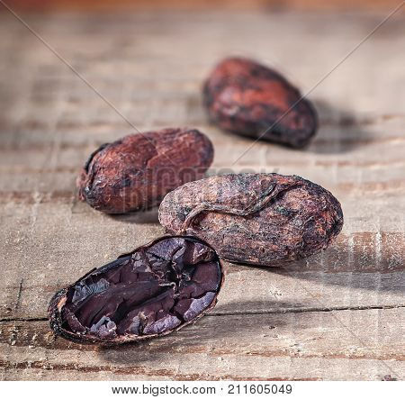 Cocoa beans in a row with a blurry background. Cocoa beans on a rustic wooden table. Chopped cacao bean.