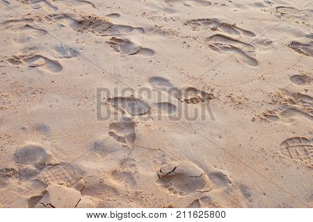 Footprint And Shoe Print On Sand At The Beach
