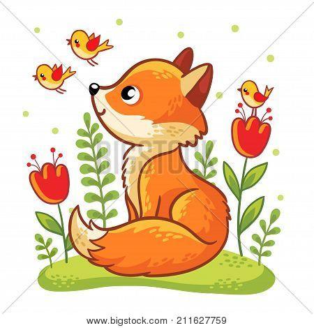 Cute Fox Sits On Green Glade.