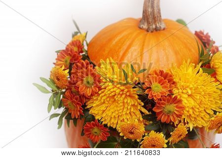 Bouquet of autumn flowers in pumpkin. autumn
