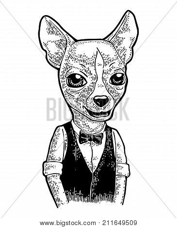Dog hipster in bow tie and waistcoat shirt. Vintage black engraving illustration for poster. Isolated on white background