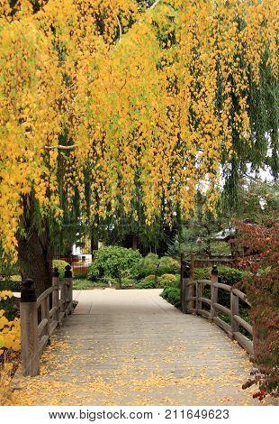 A City Park In Autumn in Denver, Colorado