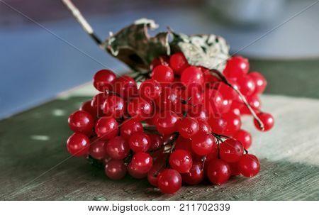 Ripe berries viburnum on wooden board for mood