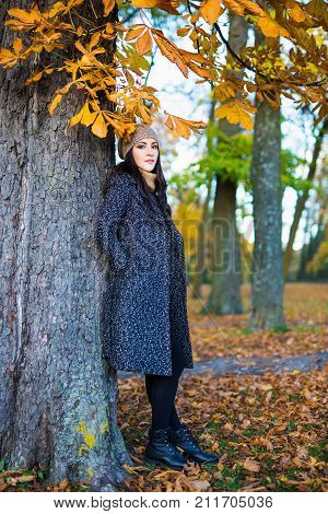 Autumn Concept - Full Length Portrait Of Beautiful Woman In Park