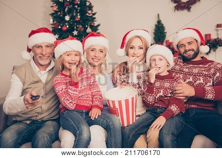 Multi Generation, Happiness, Friendship. Group Of Cheerful Relatives Bonding On Couch, Excited, Mom,