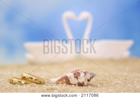 Wedding Rings And Sea Shell