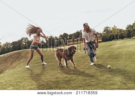 Carefree Sunday. Full length of young modern couple playing with their dog while spending carefree time in the park