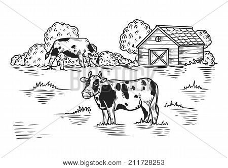 Sketch Meadow with cow and barn, tree. Countryside with animal, outdoor view on ranch with cattle. Rural landscape. Dairy and husbandry, milk product and eco meat, yogurt and cheese, beef food theme