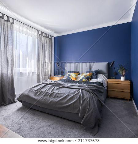 Cobalt Blue Bedroom With Bed