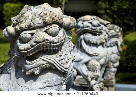 Two statue of Chinese Foo Dog on summer day