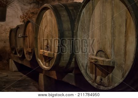 Wine cellar with barrels of aged wine.Slovenia.