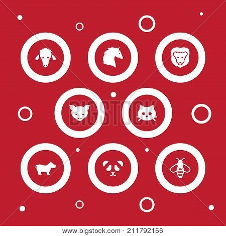 Collection Of Steed, Bear, Hippo And Other Elements.  Set Of 8 Alive Icons Set.