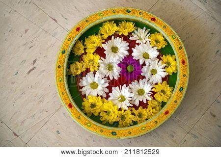 A set of colorful flowers arranged in a vase of water