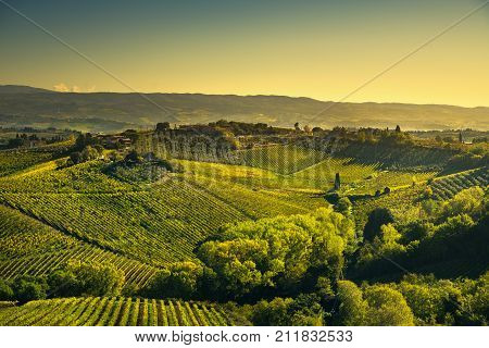 Panoramic view of countryside and chianti vernaccia vineyards from San Gimignano on sunrise. Tuscany Italy Europe.