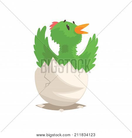 Funny newborn green bird in broken egg shell. Baby feathered animal hatching from egg. Little creature life. Flat cartoon tiny birdie character birthday. Emoji vector illustration isolated on white.
