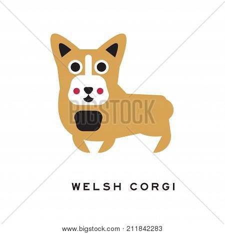 Funny welsh corgi character in cartoon style. Small type of herding dog. Small brown doggie with cute muzzle and short paws. Human s best friend. Isolated vector illustration design for card or flyer.