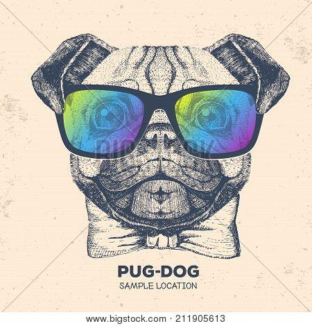 Retro Hipster animal pug-dog. Hand drawing Muzzle of pug-dog