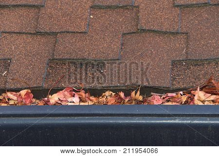 Gutters on shingle roof without gutter guards clogged with leaves from trees. Increased risk of clogged gutters rusting increased need for maintenance and is a potential fire hazard. poster