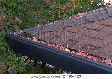 Gutters on shingle roof without gutter guards clogged with leaves from trees. Increased risk of clogged gutters rusting increased need for maintenance and is a potential fire hazard.