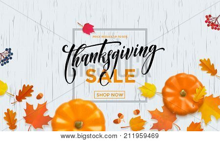 Thanksgiving Autumn Sale Poster Pumpkin Leaf Fall Discount Promo Shop Vector Background