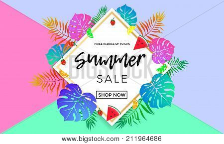 Summer Sale Price Reduce Shopping Vector Palm Leaf Fruit Banner