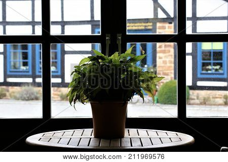 An image of a view from a lattice window on a half-timbered house