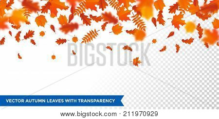 Autumn Falling Leaves Pattern Autumanl Leaf Fall On Vector Transparent Background
