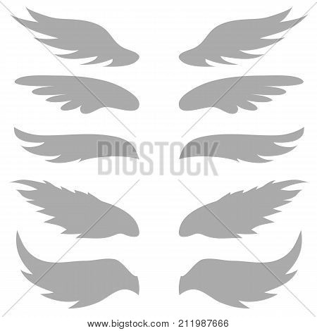 illustration with wings silhouettes on white background