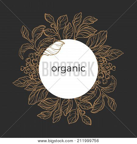 Template of golden mate branches with realistic leaves berry and flowers. Organic product. Silhouette art line. Botanical illustration in circle. Sketch. Vector isolated on black background eps.10