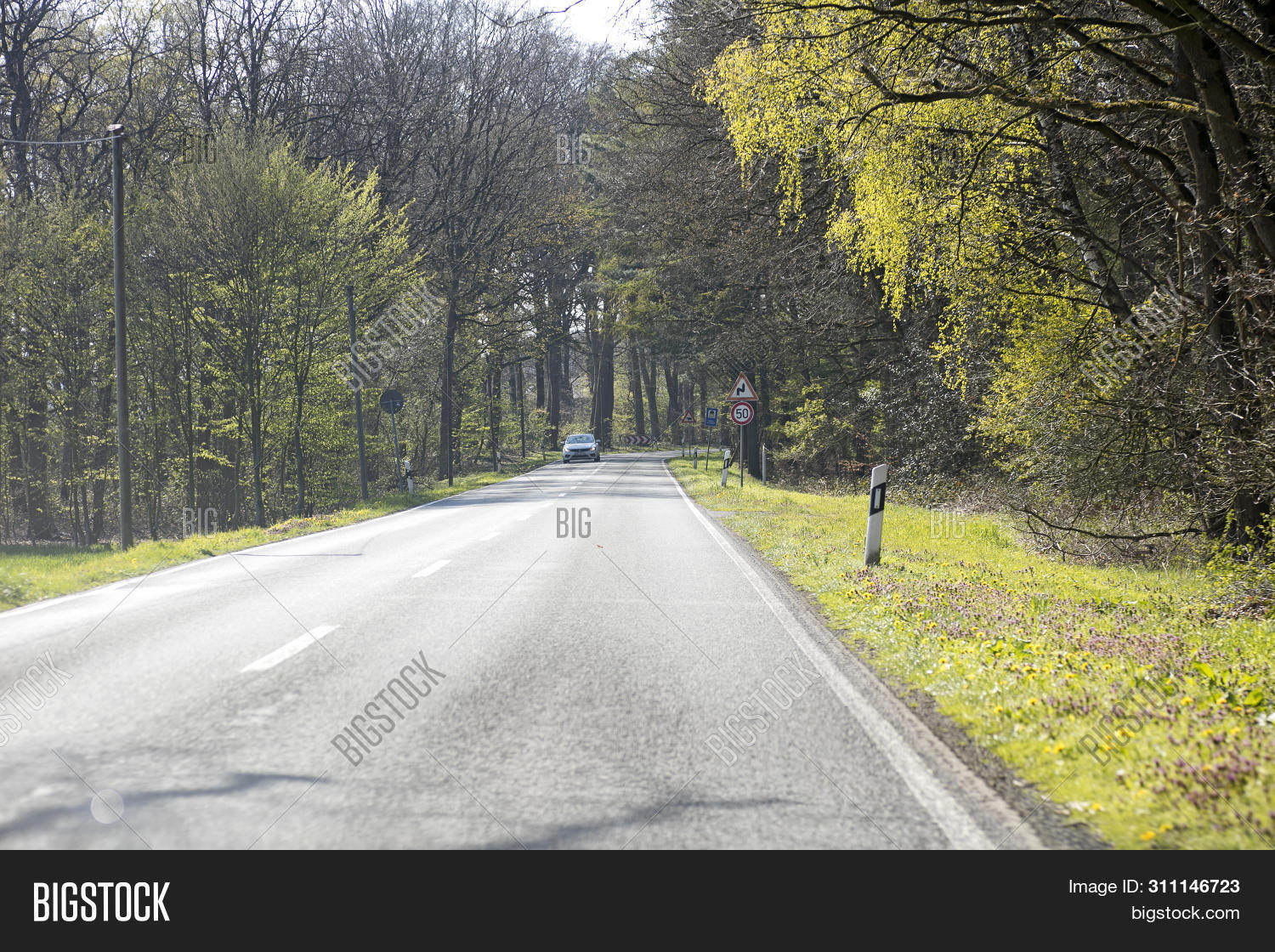Empty Road Trees Image Photo Free Trial Bigstock Images, Photos, Reviews