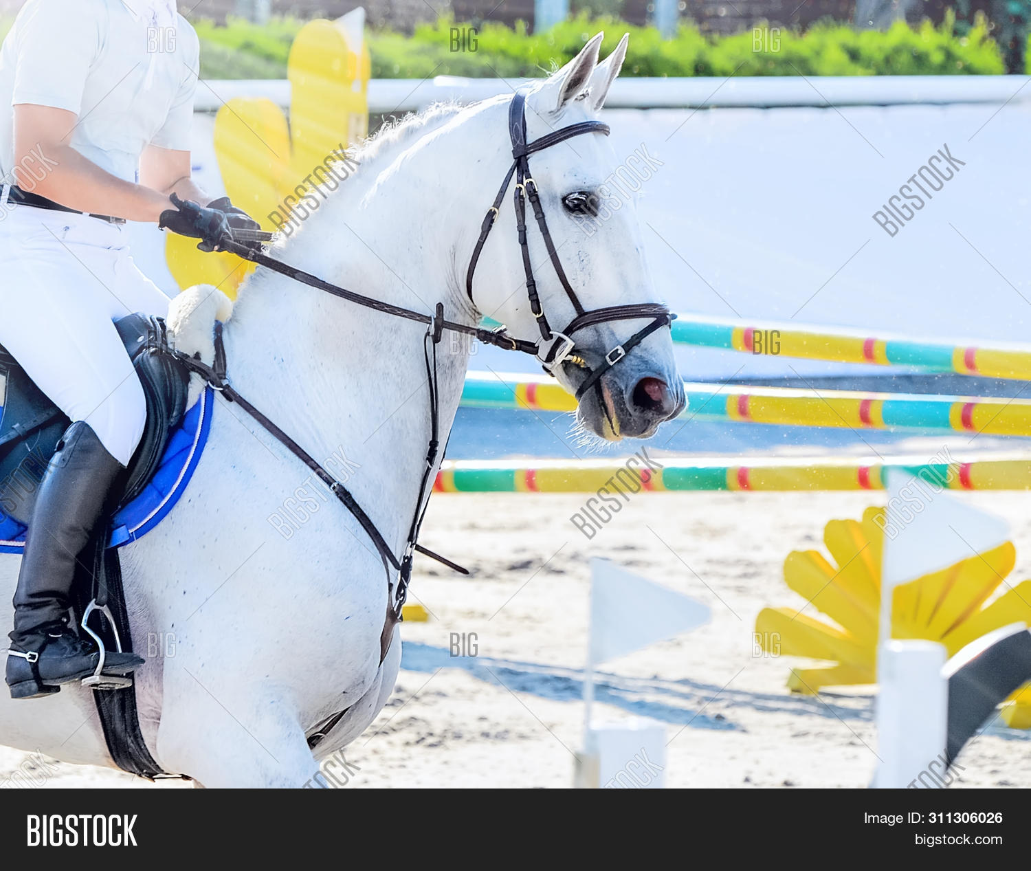 Horse Rider Light Image Photo Free Trial Bigstock