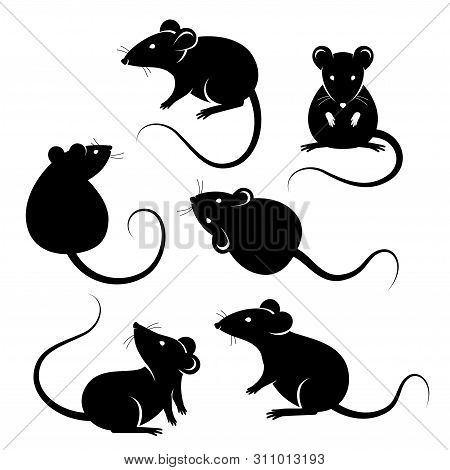 Set Of Rats Black Silhouettes, Isolated On White. Vector Illustration. Symbols Of 2020 Chinese New Y