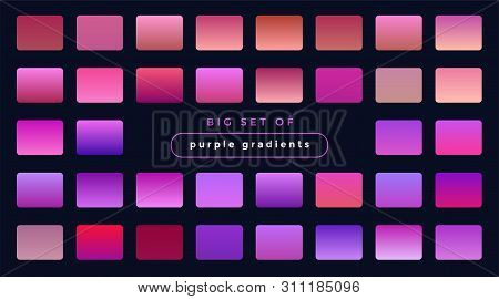 poster of vibrant set of purple and pink gradients