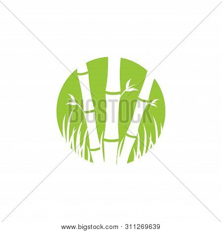 Bamboo Icon Isolated On White Background From Nature Collection. Bamboo Icon Trendy And Modern Bambo