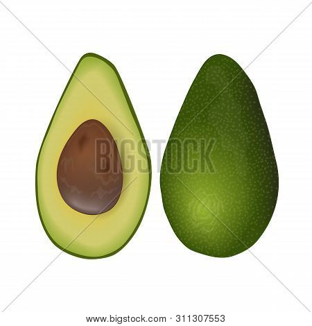Avocado Ripe Fruit. Persea Americana Raw Exotic Pod Whole And Halved With Seed. Fatty Flesh.
