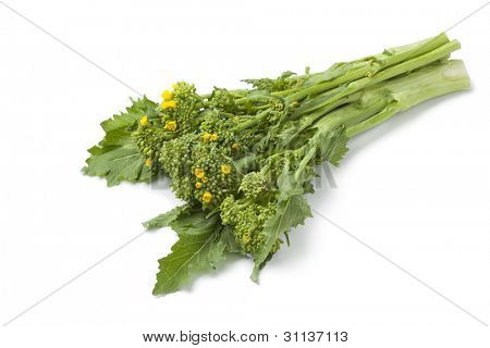 Bunch of fresh picked broccolini on white background