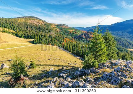 Beautiful Sunrise Landscape In Apuseni Mountains. Coniferous Forest On The Distant Hills And Grassy