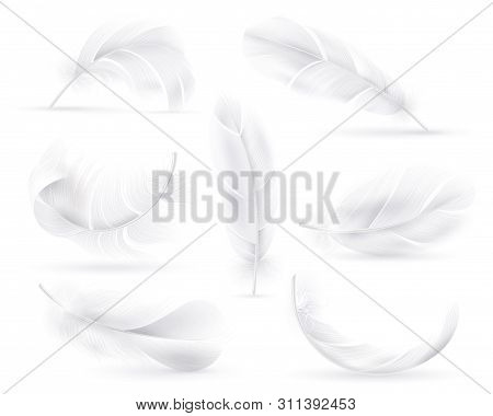 Realistic White Feathers. Falling Fluffy Twirled Bird Or Angel Wings Feathers. Flying, Floating Deco