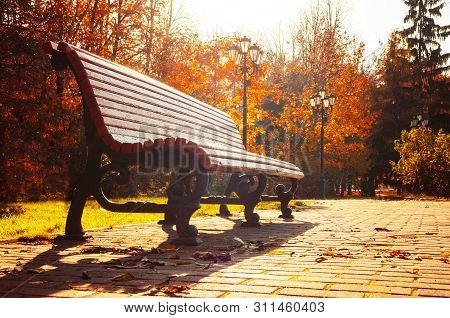 Autumn October landscape. Bench at the autumn park under colorful deciduous autumn trees lit by bright morning sunlight. Sunny autumn landscape view, autumn park landscape