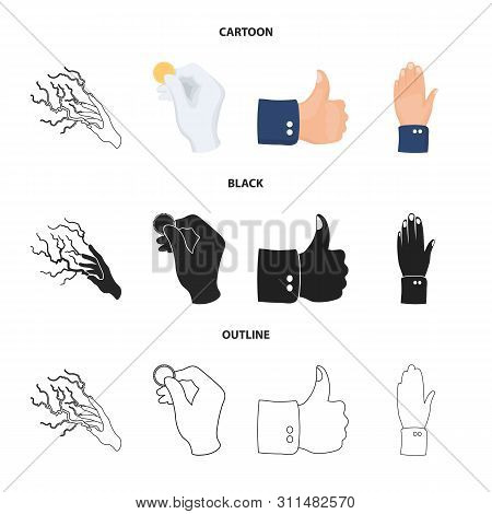 Vector Illustration Of Animated And Thumb Icon. Collection Of Animated And Gesture Vector Icon For S
