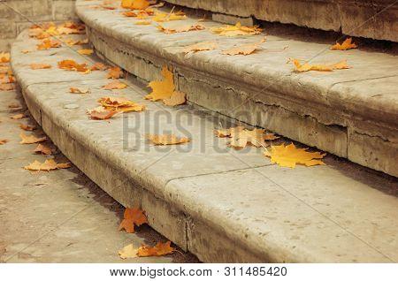 Autumn leaves background. Fallen dry orange maple autumn leaves on the stone staircase. Autumn city park view. Closeup of autumn leaves on the stone stairs. Autumn leaves background