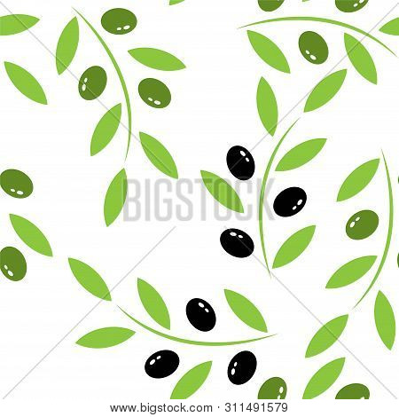 Beautiful Illustration With Branch Of Black Olives On White Background