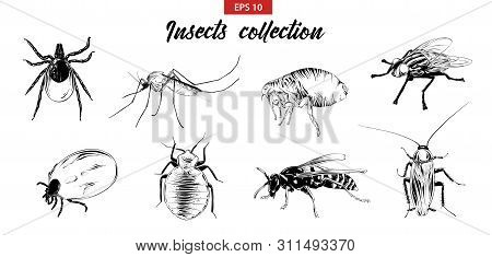 Vector Engraved Style Illustrations For Posters, Logo, Emblem And Badge. Hand Drawn Sketch Set Of In