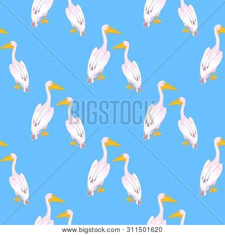 A couple of pink pelicans. Waterfowl. A large gregarious waterbird with a long bill. Seamless pattern for fabric, for wallpaper, for surface design. poster