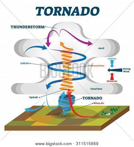 Tornado Vector Illustration. Labeled Educational Wind Vortex Explanation. Weather Hurricane Scheme W