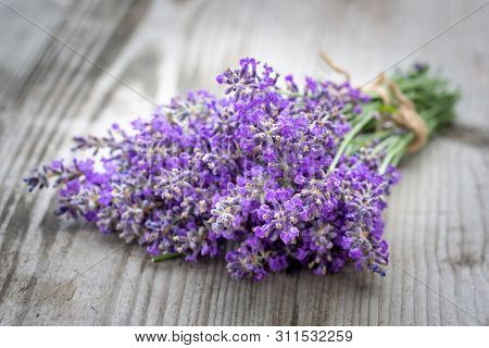 Bouquets Of Lavender On Wooden Background. Medicinal Plants. Aromatherapy. Macro