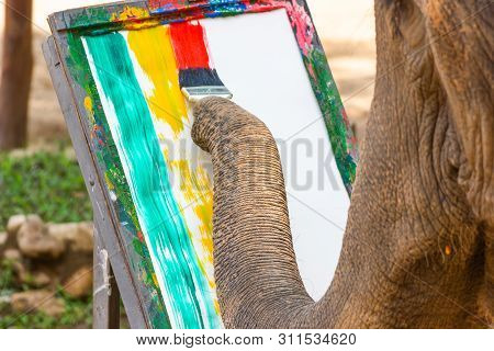 Lampang, Thailand - April 13, 2017:-elephant Painting In Picture Elephant, At The Thai Elephant Cons