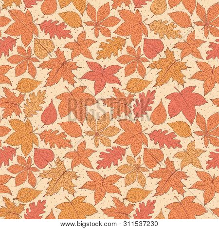 Vector Autumn Seamless Pattern With Oak, Poplar, Beech, Maple, Aspen And Horse Chestnut Leaves Of Or